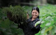 farming girl