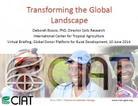 Bossio_Transforming Global Landscapes