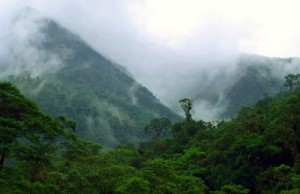 """Alto Mayo, Peru, in the Western Amazon region–one of seven """"sentinel landscapes"""" being monitored over time by scientists. Bruno Locatelli/CIFOR photo"""