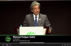 Pulgar-Vidal