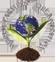 WorldFarmerOrganisation_logo_tra