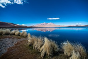 laguna canapa in the bolivian highlands