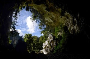 the owl s cave in the tingo maria national park peru