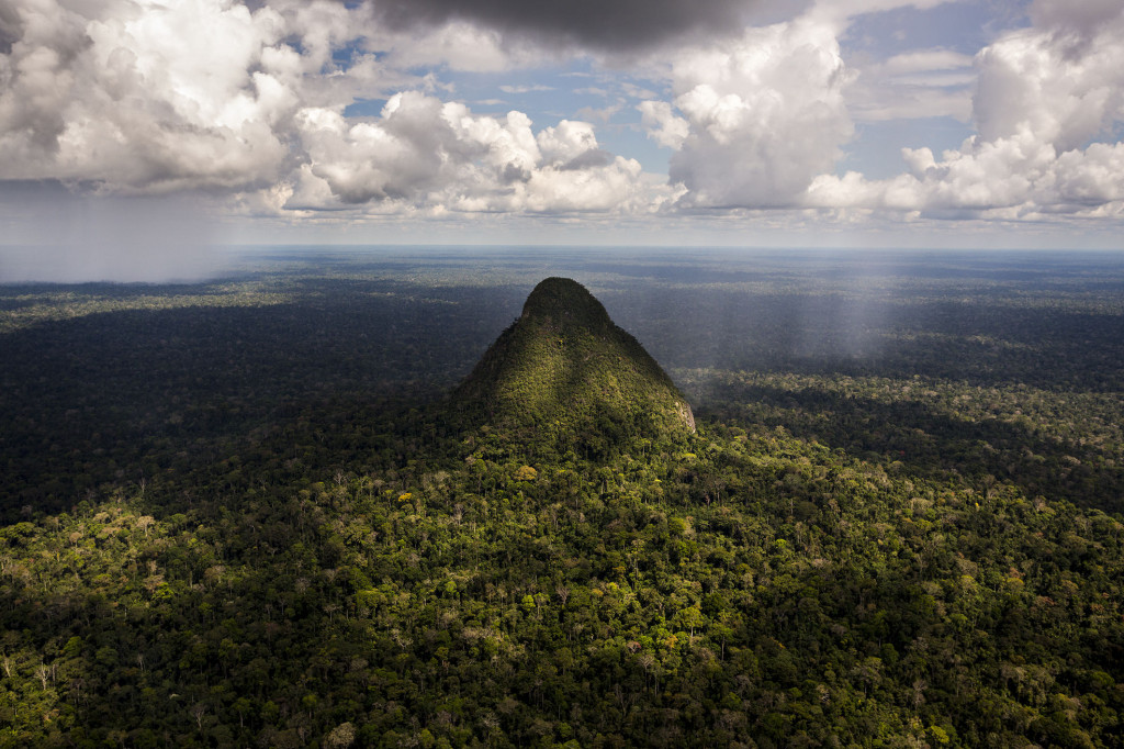 espanol el cono zona reservada sierra del divisor en ucayali ndash peru