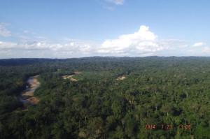 espanol naciente de los rios y bosque madre de dios peru