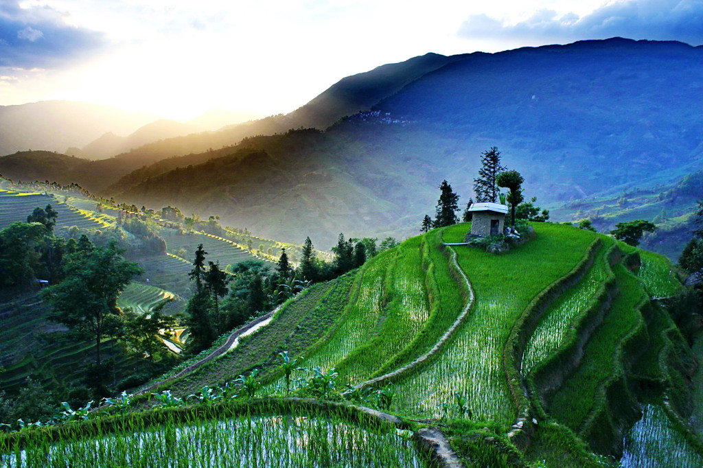 Yuanyang China  city images : Terraced rice fields of Yuanyang, China 1