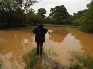 water woes sanyati zimbabwe