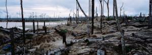 espanol mineria informal deforestacion contaminacion peru