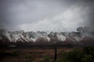 carboneria brazil