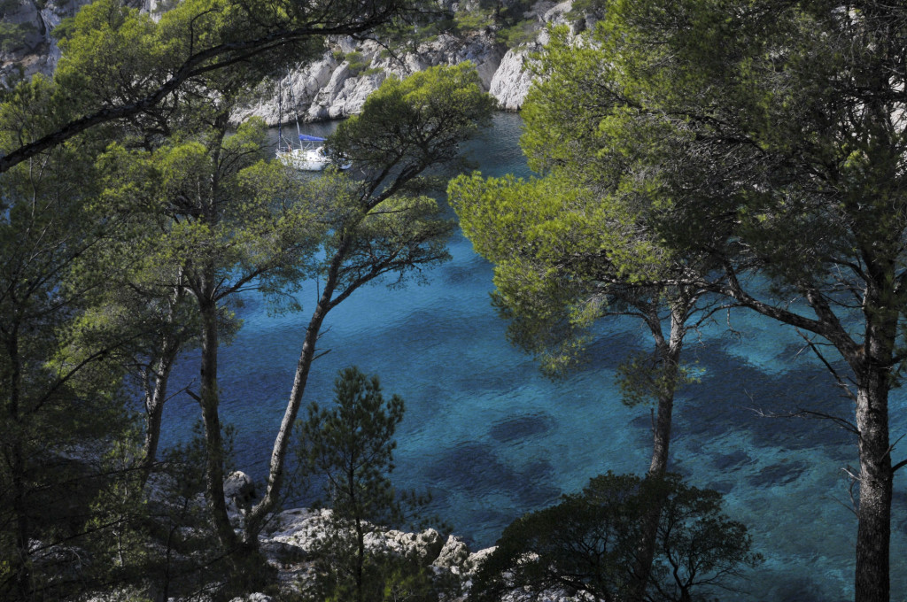 cassis paradise france