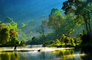 morning bliss situ gunung lake indonesia