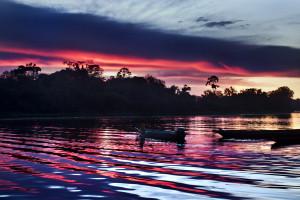 espanol atardecer en el rio ampiyacu amazonia peruana
