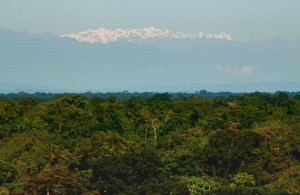 view from the amazon to the andes madre de dios peru