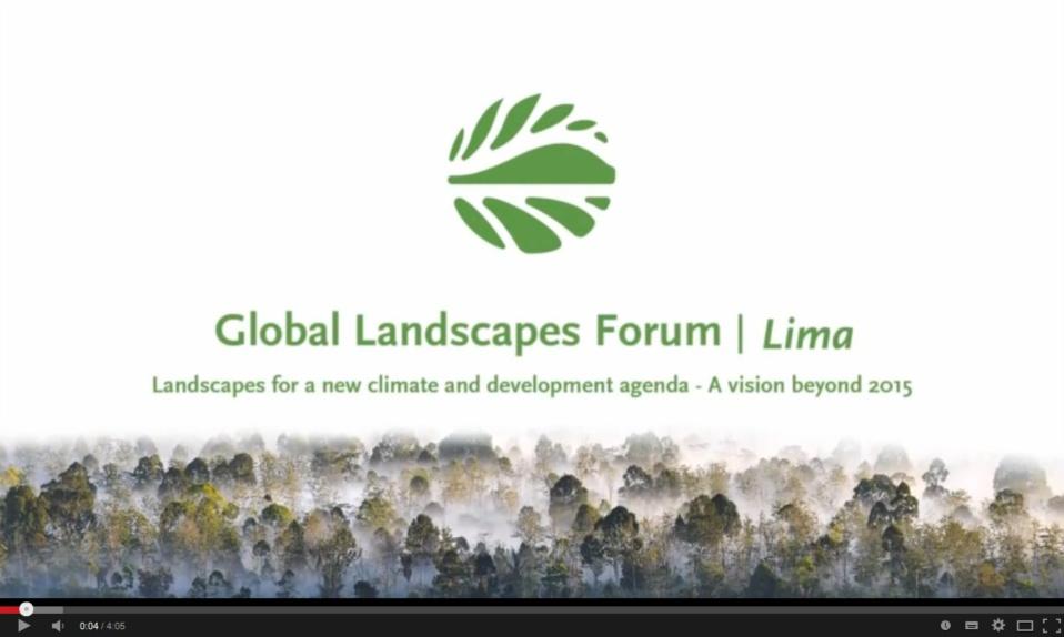 GLF2014-Video