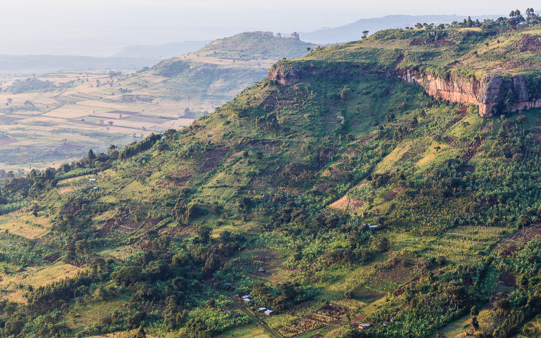Agriculture on the slopes of Mount Elgon