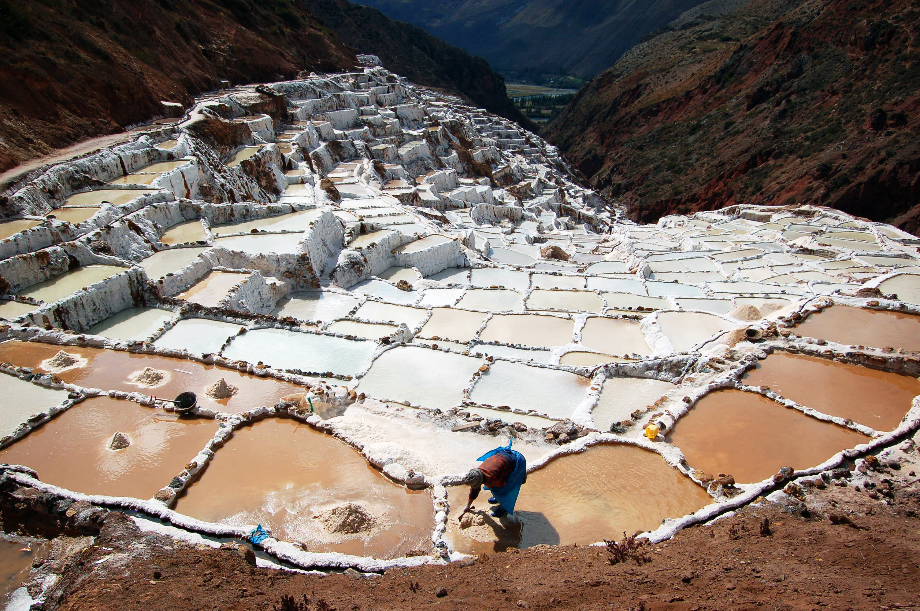 Salinas salt farmer