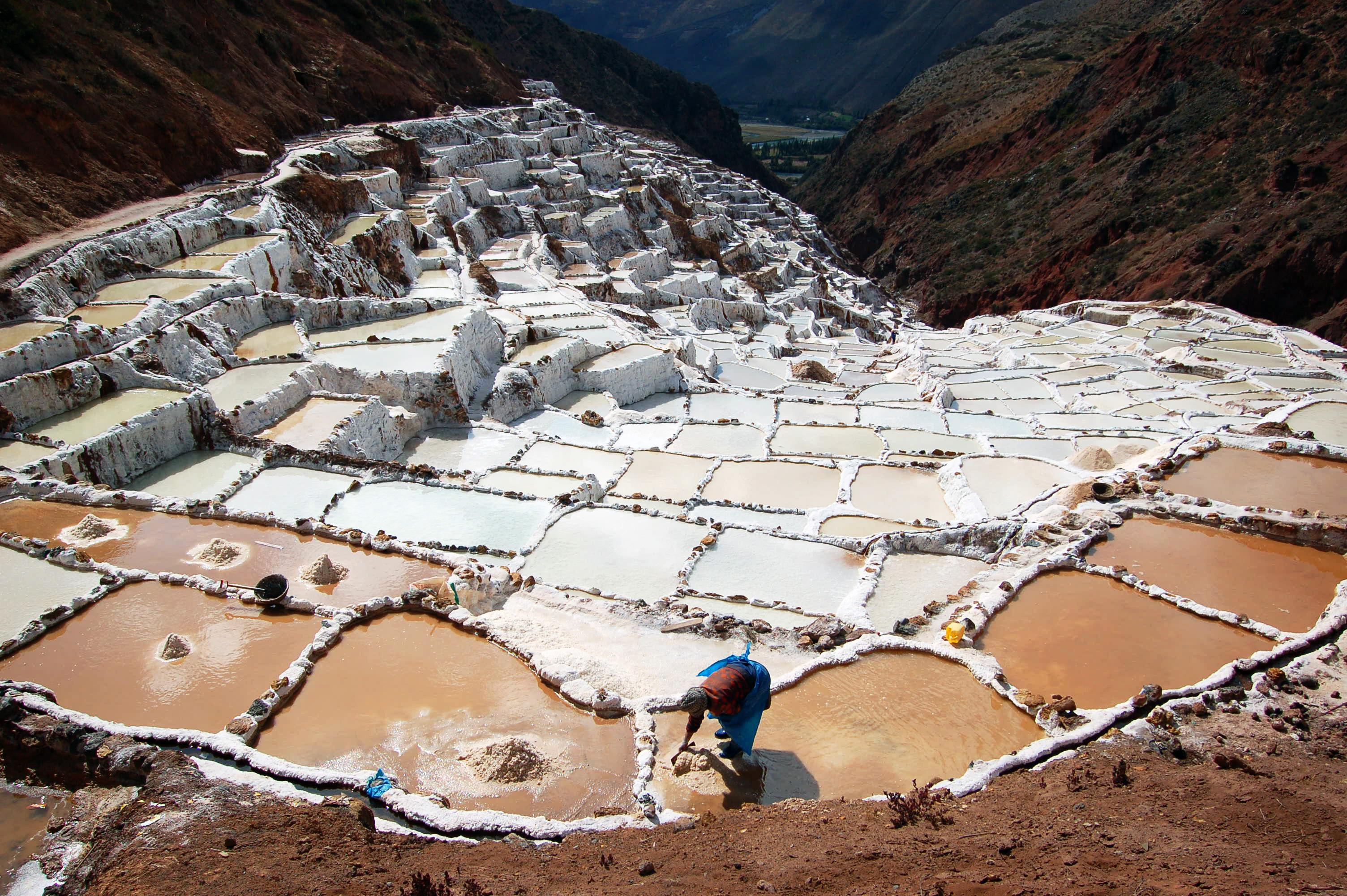 Salinas salt farmer