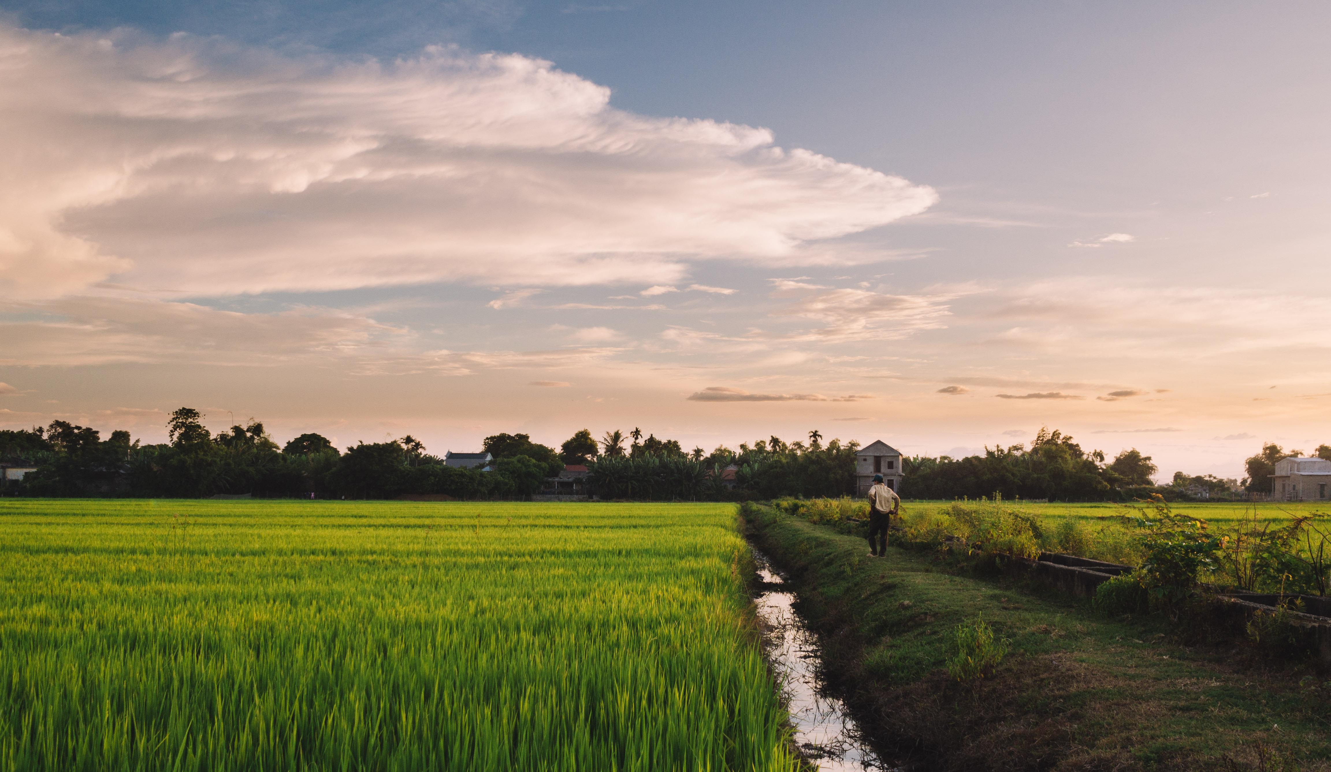 Sustainable development in rural Huế