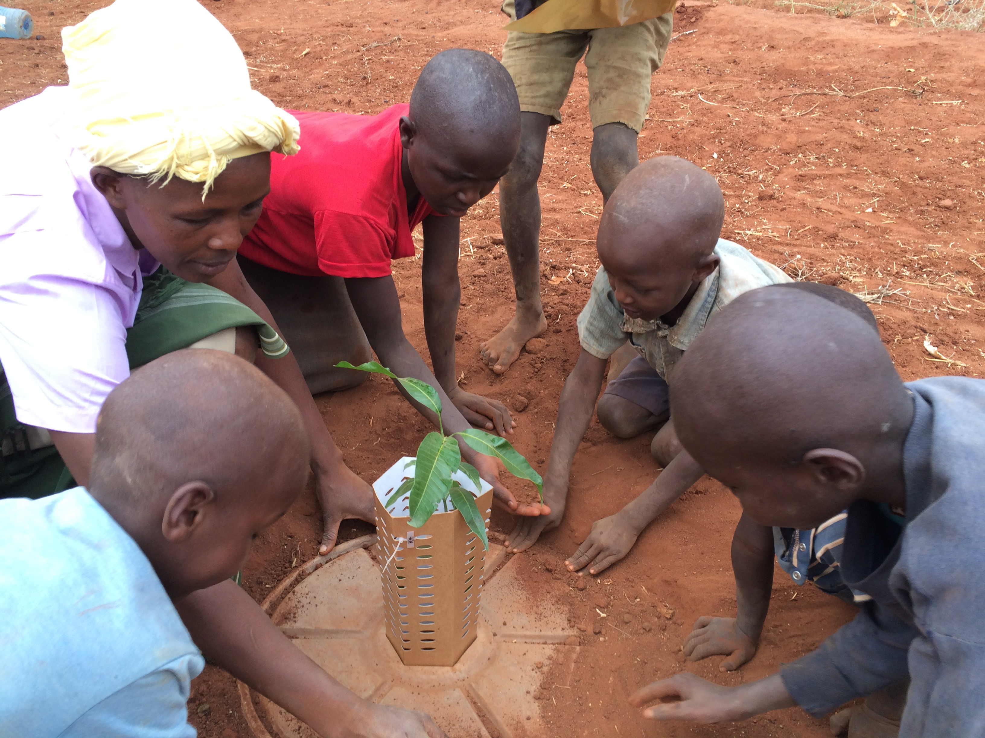 Sustainable agriculture in Kenya with the Cocoon