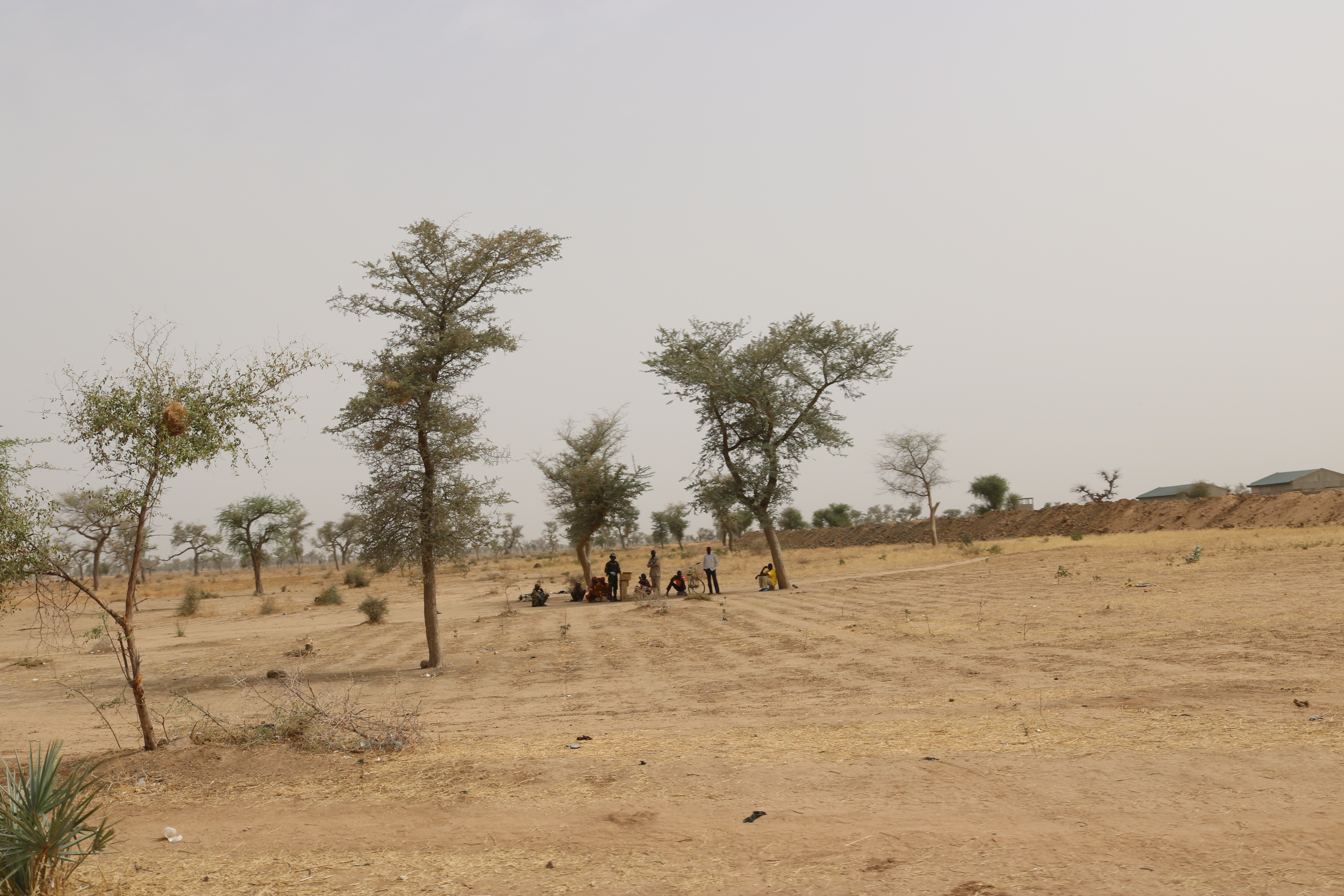 The Fight against Boko Haram and Drought