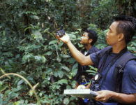 (ALL RIGHTS) TNC's Nardiyono, Team Leader Orangutan Nest Survey, uses a GPS to plot location during survey work in the Lesan River Orangutan Survey site in the forest of East Kalimantan, Borneo, Indonesia. Photo  credit: © Mark Godfrey/TNC