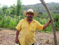 Farmer Guatemala