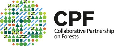 Forest partners