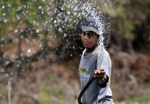 Irrigation in Nicaragua