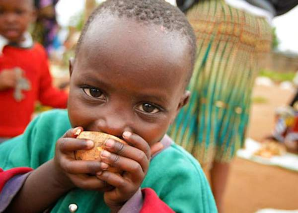 Food security is not just about nutrition; 2 billion people lack sufficient essential nutrients in their diet. Food and crop biofortification are two solutions.