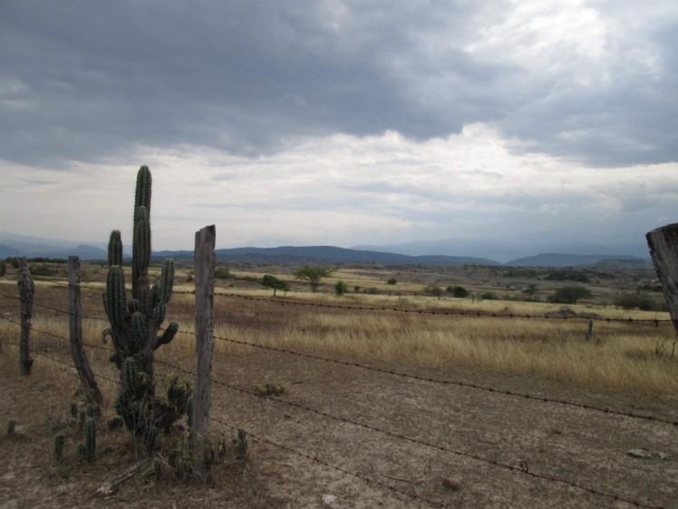 Alambrada-en-el-desierto-Nasly-Maldonado-1024x768