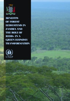 Benefits_of_Forest_Ecosystem_Zambia_Full_report_FINAL_pdf__page_1_of_98_