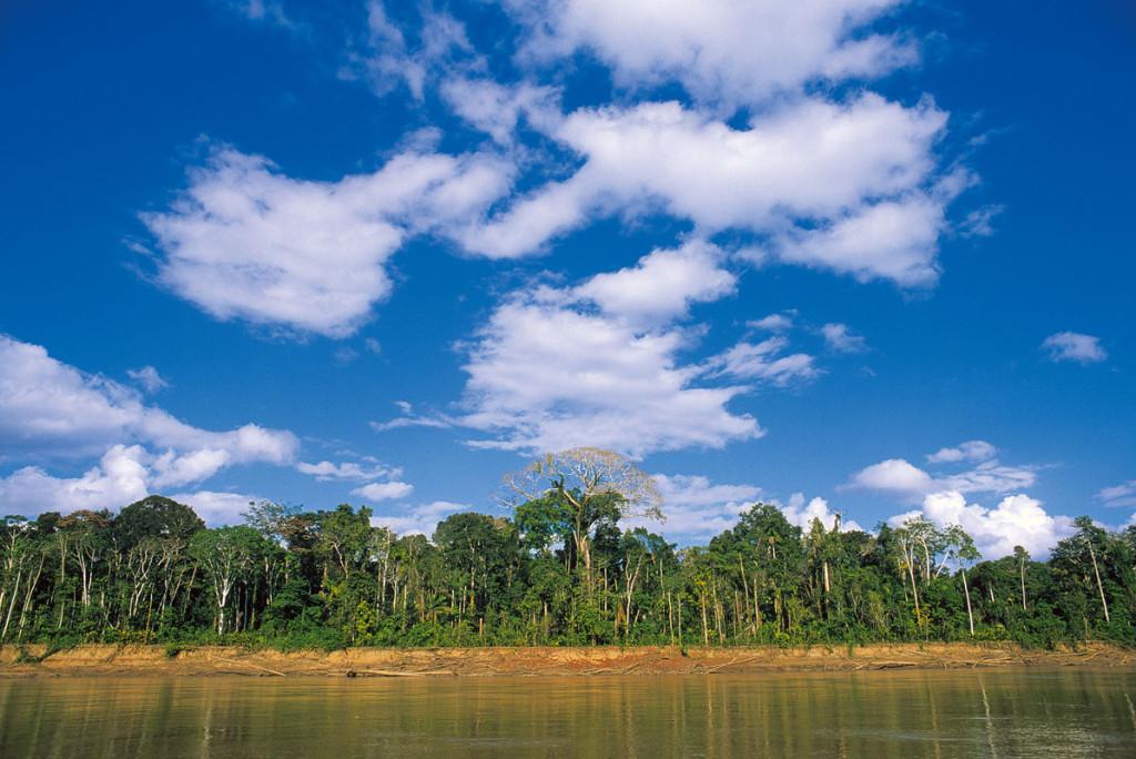 2015-3-20 - Bosques del rio Alto Madre de Dios proveen nuestros bonos de carbono