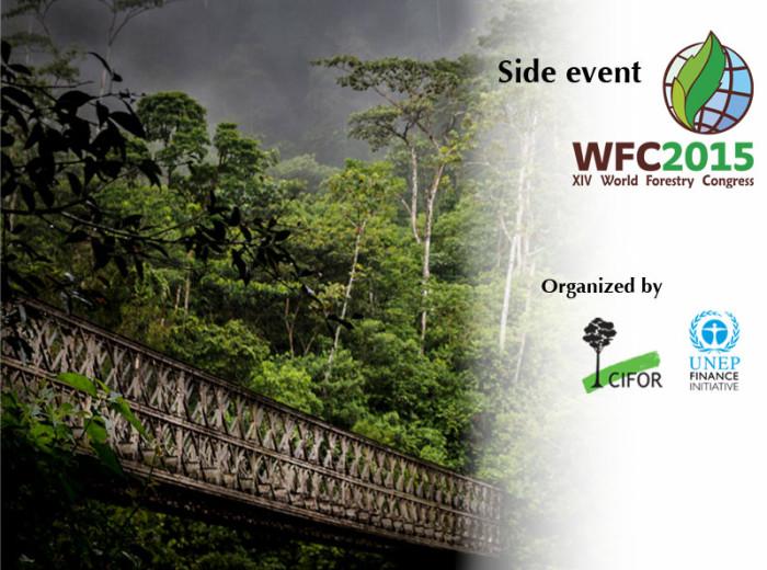 WFC-GLF-roadmap-event---hero-teaser