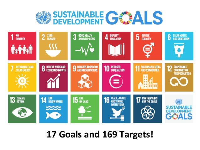international case developing verifiable goals Twin priorities of sustainable development goals in the gabčíkovo-nagymaros case, the international court of justice invoked sustainable development as an.