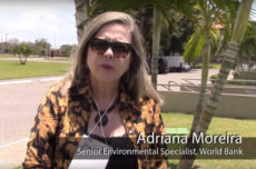 Building sustainable landscapes through gender-responsive restoration in Brazil
