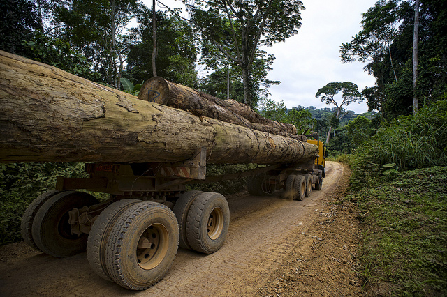 Wood truck. Photo by CIFOR.