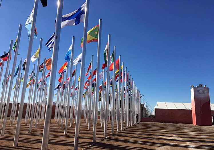 The world's nations met at Marrakech to map out implementation of the Paris Agreement. Photo: Center for International Forestry Research/Grace Wong.